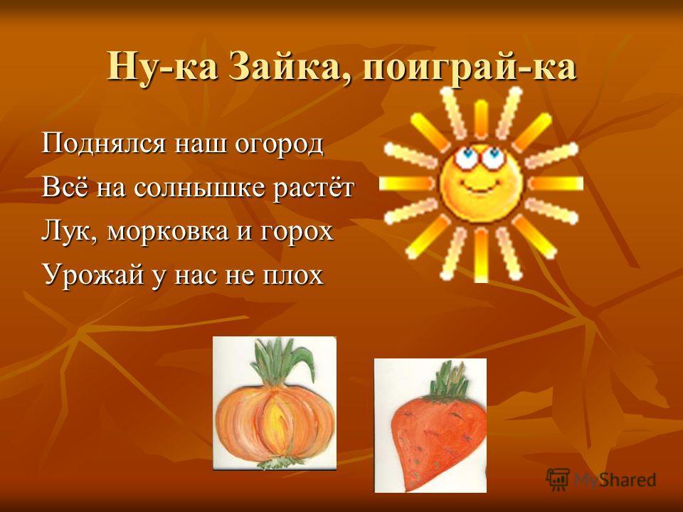 Ну-ка Зайка, поиграй-ка Поднялся наш огород Всё на солнышке растёт Лук, морковка и горох Урожай у нас не плох