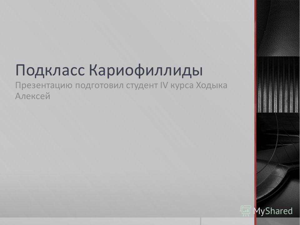 Подкласс Кариофиллиды Презентацию подготовил студент IV курса Ходыка Алексей
