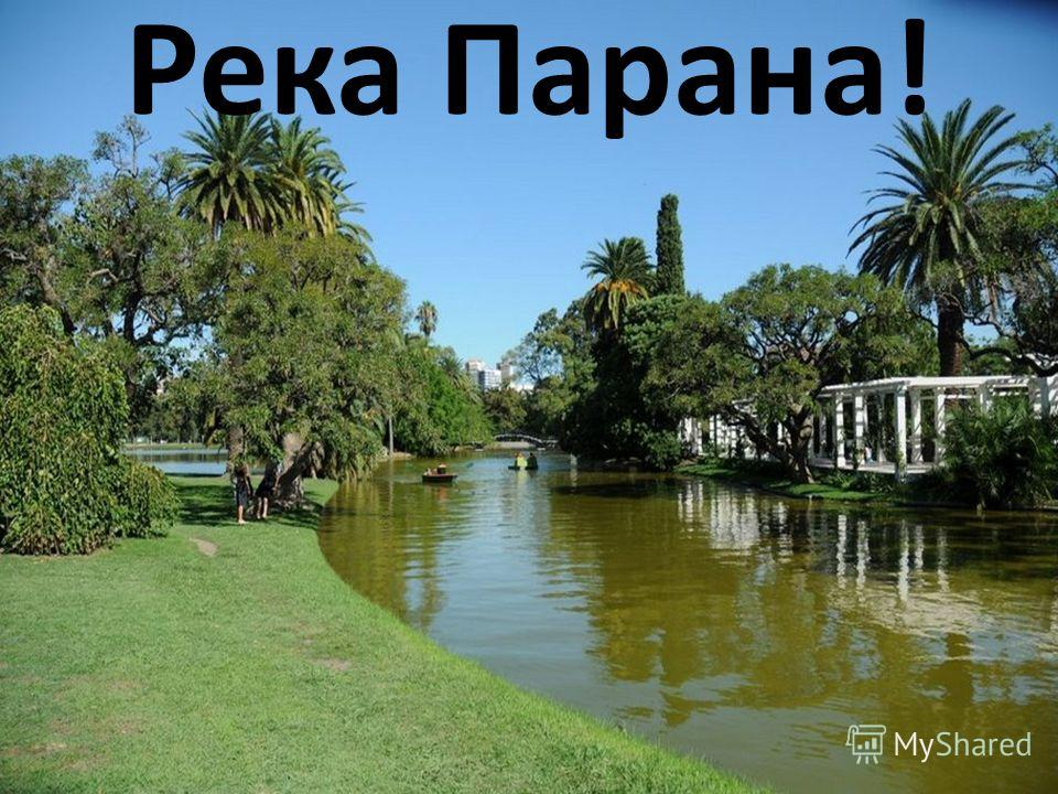Река Парана!