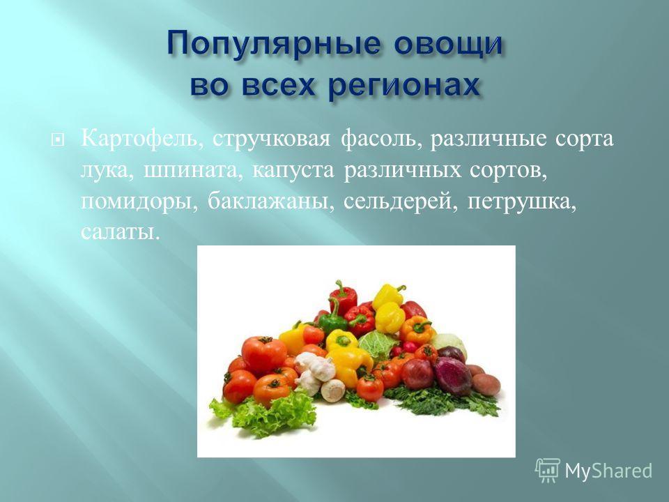 Картофель, стручковая фасоль, различные сорта лука, шпината, капуста различных сортов, помидоры, баклажаны, сельдерей, петрушка, салаты.