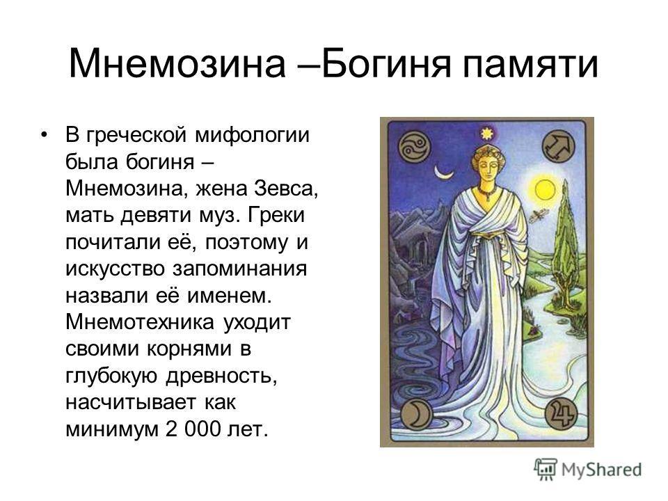Мнемозина –Богиня памяти В греческой мифологии была богиня – Мнемозина, жена Зевса, мать девяти муз. Греки почитали её, поэтому и искусство запоминания назвали её именем. Мнемотехника уходит своими корнями в глубокую древность, насчитывает как миниму