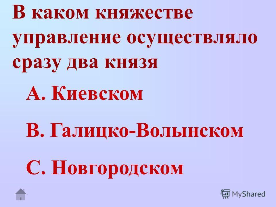 В каком княжестве управление осуществляло сразу два князя A. Киевском B. Галицко-Волынском C. Новгородском