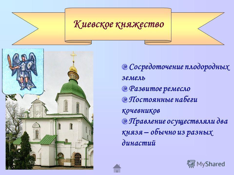 Киевское княжество Сосредоточение плодородных земель Развитое ремесло Постоянные набеги кочевников Правление осуществляли два князя – обычно из разных династий