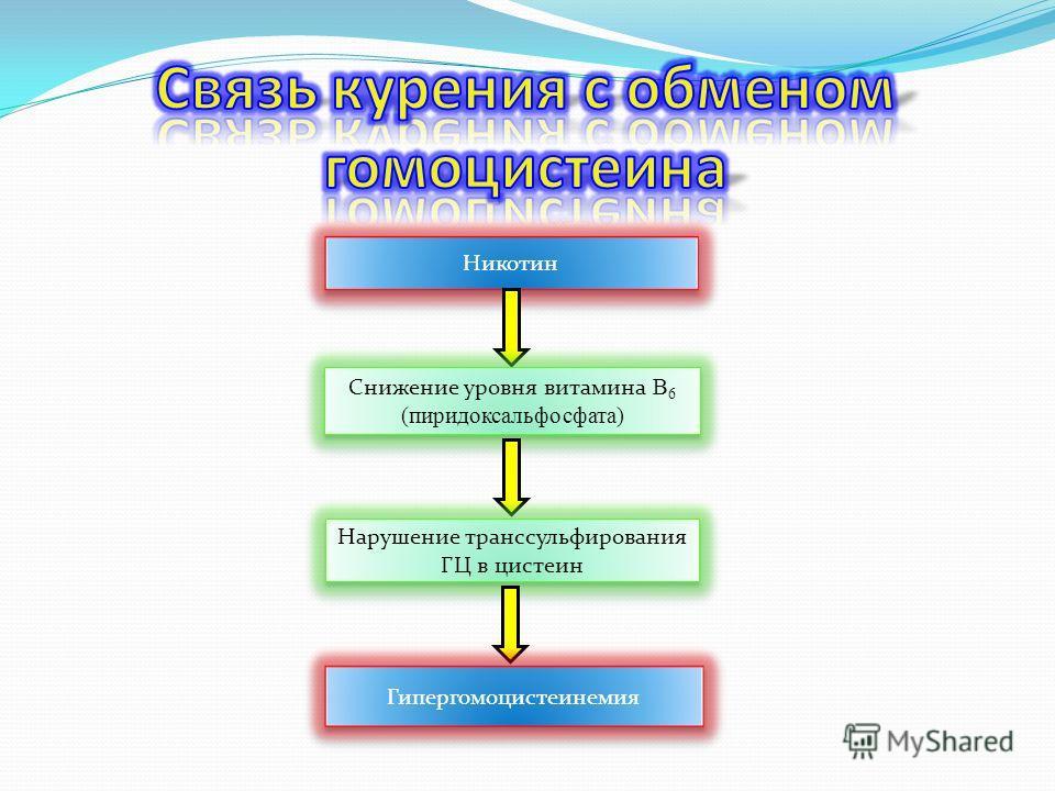 Никотин Снижение уровня витамина В 6 (пиридоксальфосфата) Нарушение транссульфирования ГЦ в цистеин Гипергомоцистеинемия
