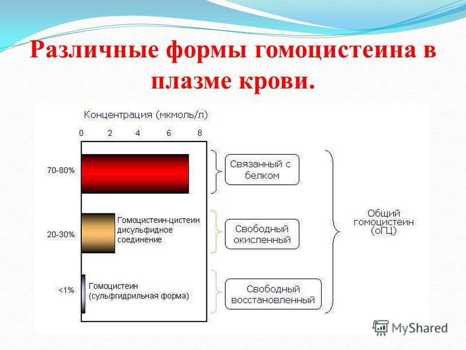 Различные формы гомоцистеина в плазме крови.