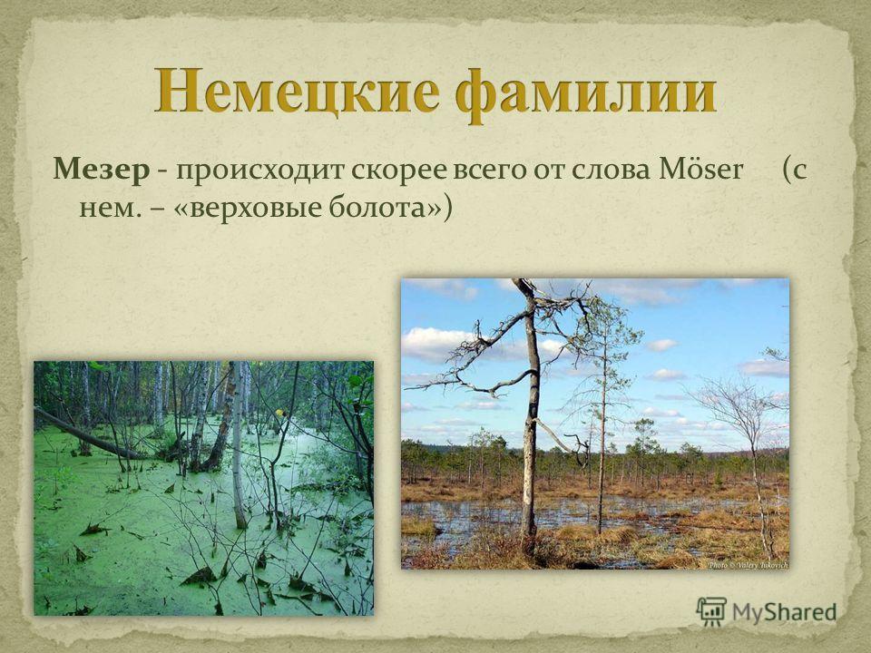 Мезер - происходит скорее всего от слова Möser (с нем. – «верховые болота»)