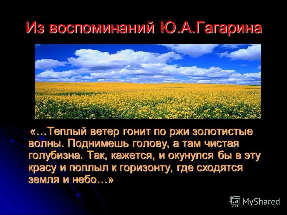 Из воспоминаний Ю.А.Гагарина «…Теплый ветер гонит по ржи золотистые волны. Поднимешь голову, а там чистая голубизна. Так, кажется, и окунулся бы в эту красу и поплыл к горизонту, где сходятся земля и небо…» «…Теплый ветер гонит по ржи золотистые волн