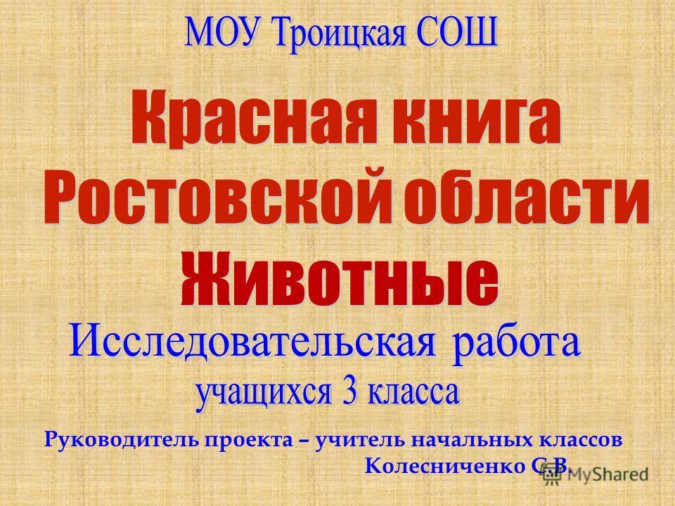 Руководитель проекта – учитель начальных классов Колесниченко С.В.