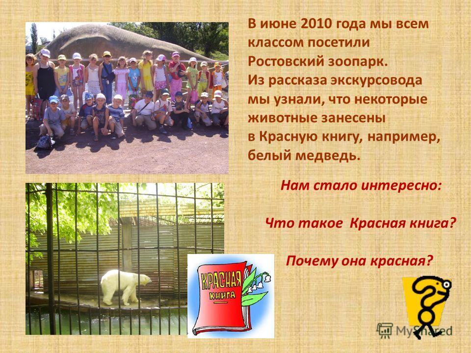 В июне 2010 года мы всем классом посетили Ростовский зоопарк. Из рассказа экскурсовода мы узнали, что некоторые животные занесены в Красную книгу, например, белый медведь. Нам стало интересно: Что такое Красная книга? Почему она красная?
