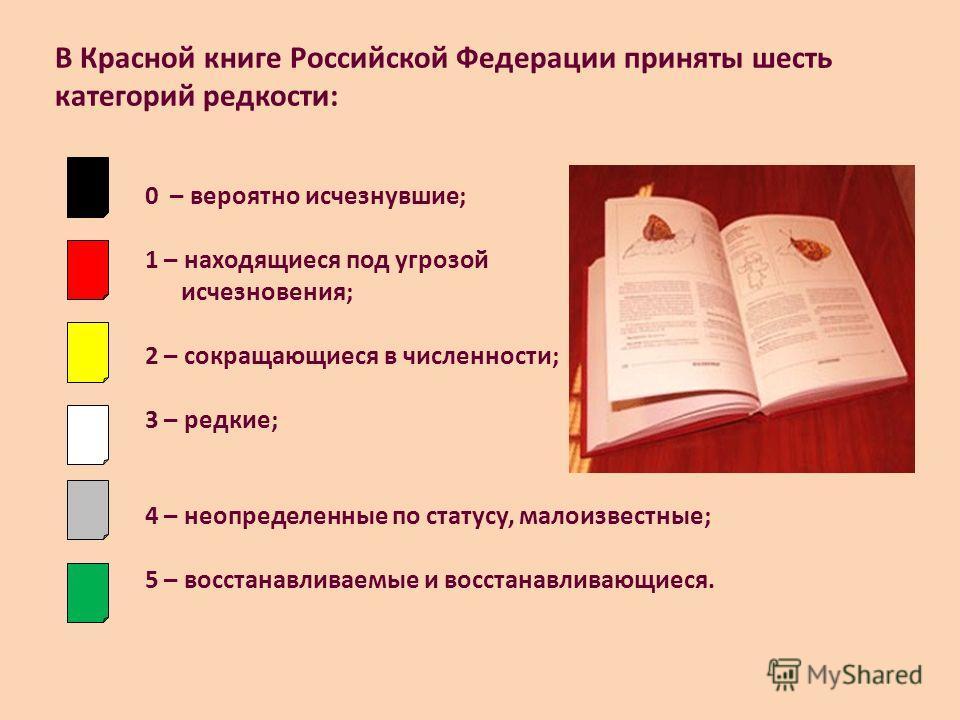 В Красной книге Российской Федерации приняты шесть категорий редкости: 0 – вероятно исчезнувшие; 1 – находящиеся под угрозой исчезновения; 2 – сокращающиеся в численности; 3 – редкие; 4 – неопределенные по статусу, малоизвестные; 5 – восстанавливаемы