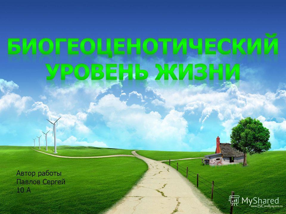 Автор работы Павлов Сергей 10 А