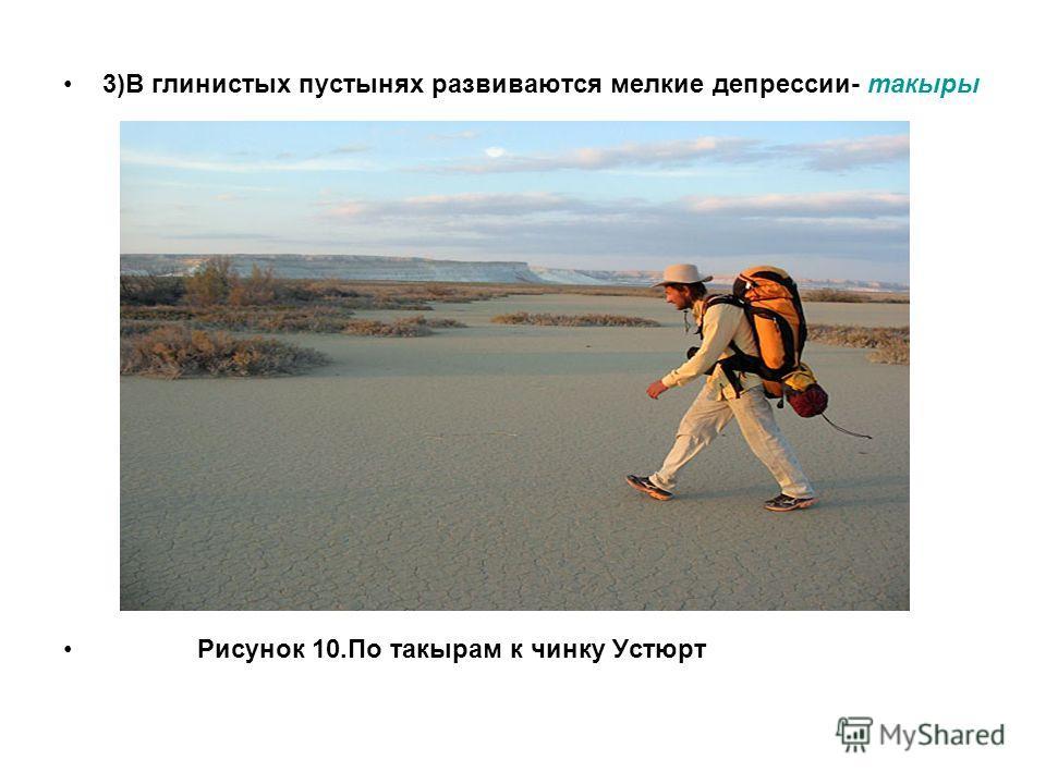 3)В глинистых пустынях развиваются мелкие депрессии- такыры Рисунок 10.По такырам к чинку Устюрт