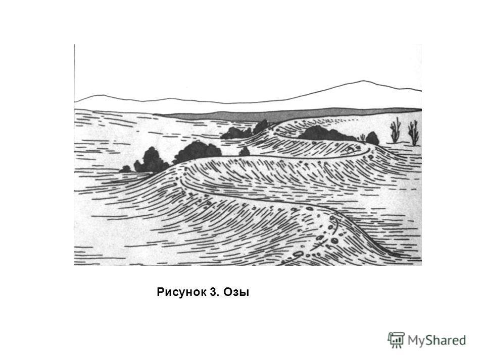 Рисунок 3. Озы