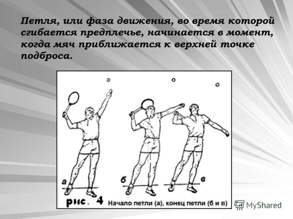 Петля, или фаза движения, во время которой сгибается предплечье, начинается в момент, когда мяч приближается к верхней точке подброса.