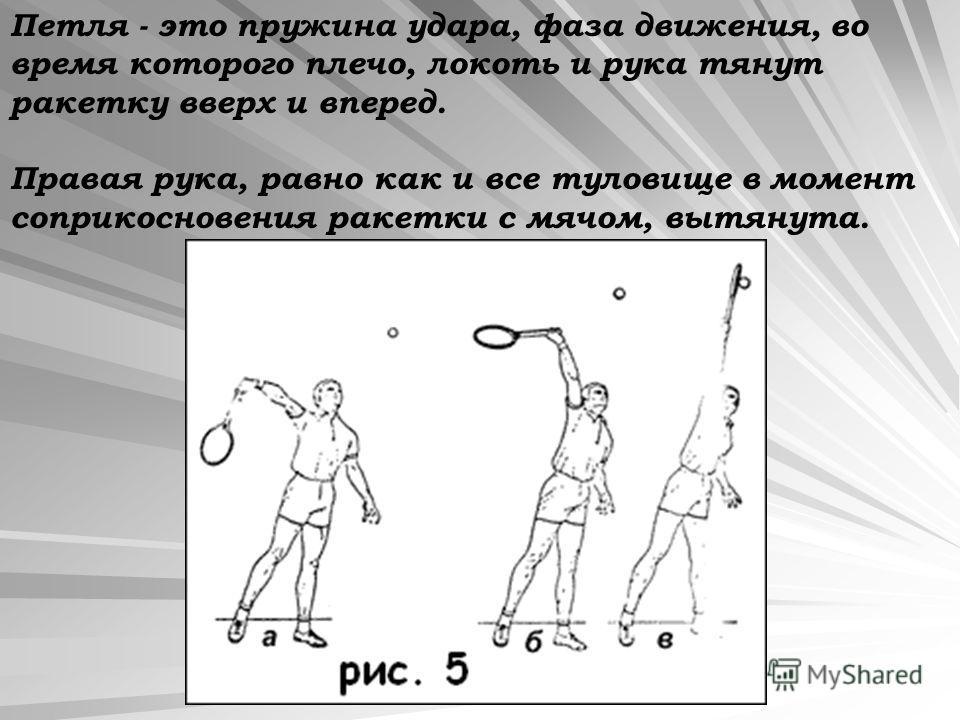 Петля - это пружина удара, фаза движения, во время которого плечо, локоть и рука тянут ракетку вверх и вперед. Правая рука, равно как и все туловище в момент соприкосновения ракетки с мячом, вытянута.