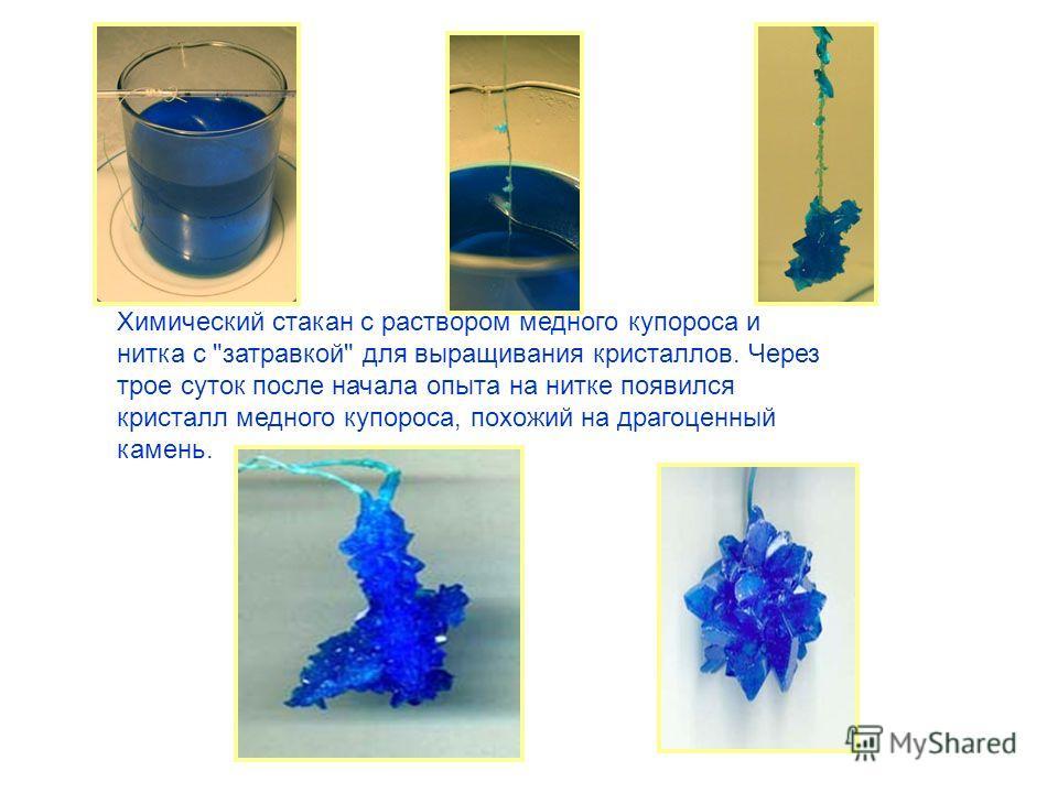 Химический стакан с раствором медного купороса и нитка с затравкой для выращивания кристаллов. Через трое суток после начала опыта на нитке появился кристалл медного купороса, похожий на драгоценный камень.