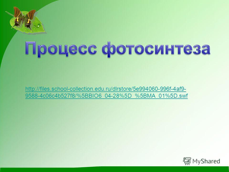 http://files.school-collection.edu.ru/dlrstore/5e994060-996f-4af9- 9588-4c06c4b527f8/%5BBIO6_04-28%5D_%5BMA_01%5D.swf
