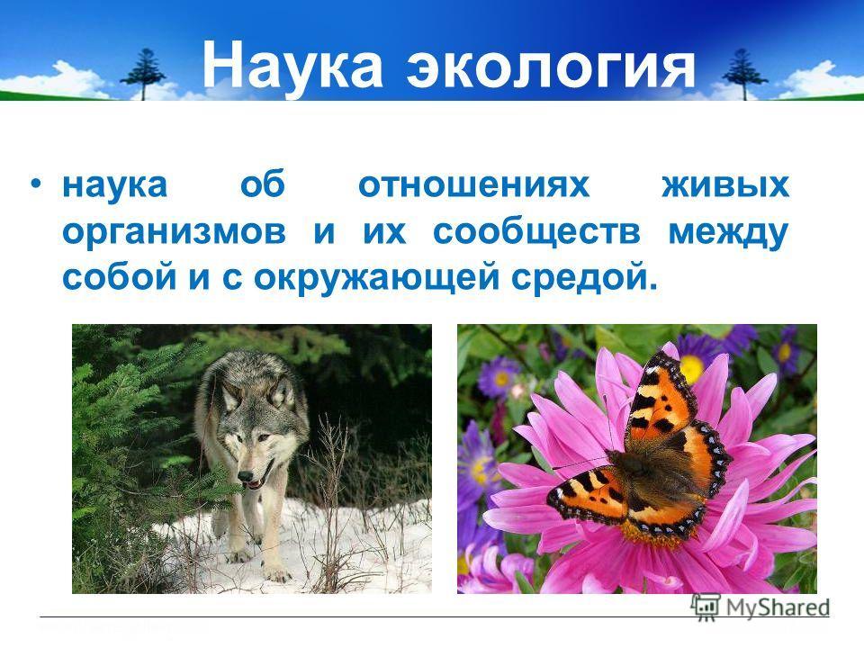 Наука экология наука об отношениях живых организмов и их сообществ между собой и с окружающей средой.