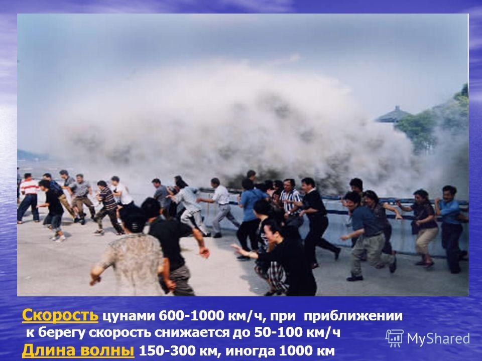 ОСНОВНЫЕ ПАРАМЕТРЫ ЦУНАМИ Период волн цунами от 5 до 90 мин Высота в месте возникновения несколько дециметров. При приближении к берегу от 10 до 70м