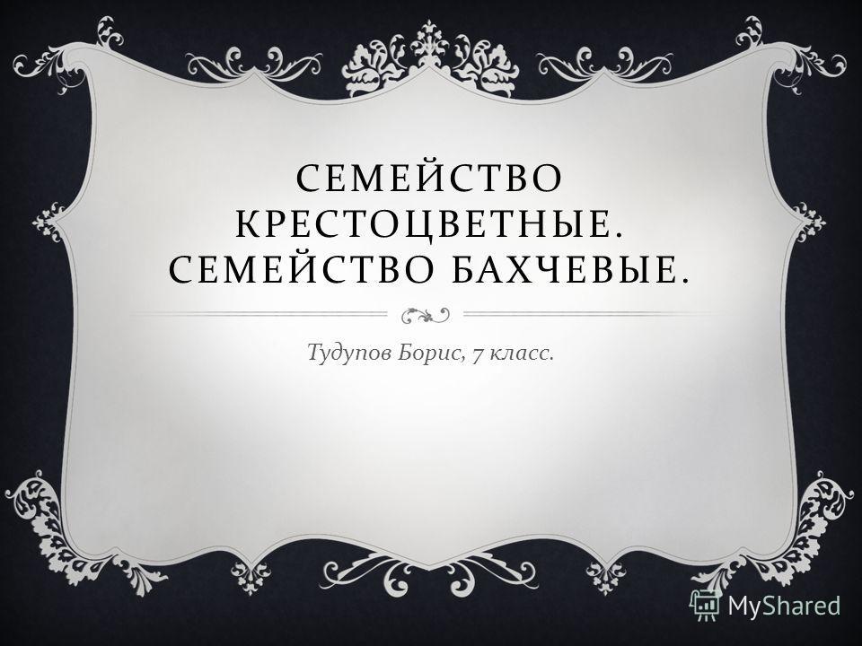 СЕМЕЙСТВО КРЕСТОЦВЕТНЫЕ. СЕМЕЙСТВО БАХЧЕВЫЕ. Тудупов Борис, 7 класс.