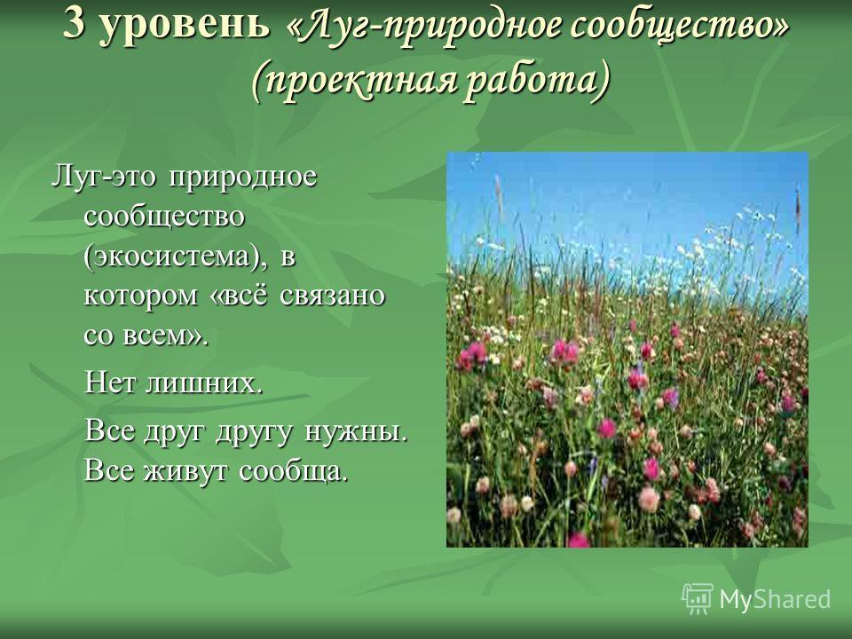 3 уровень «Луг-природное сообщество» (проектная работа) Луг-это природное сообщество (экосистема), в котором «всё связано со всем». Нет лишних. Нет лишних. Все друг другу нужны. Все живут сообща. Все друг другу нужны. Все живут сообща.