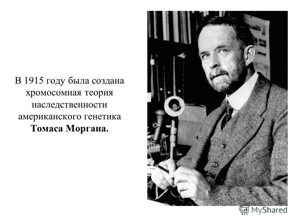 В 1915 году была создана хромосомная теория наследственности американского генетика Томаса Моргана.