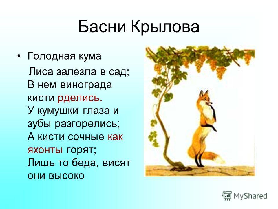 Басни Крылова Голодная кума Лиса залезла в сад; В нем винограда кисти рделись. У кумушки глаза и зубы разгорелись; А кисти сочные как яхонты горят; Лишь то беда, висят они высоко