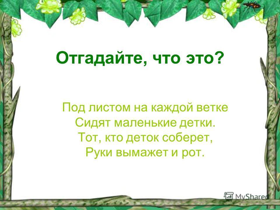 Отгадайте, что это? Под листом на каждой ветке Сидят маленькие детки. Тот, кто деток соберет, Руки вымажет и рот.