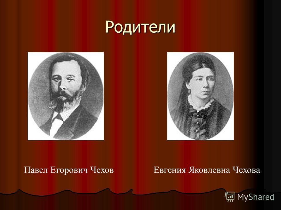 Родители Павел Егорович Чехов Евгения Яковлевна Чехова