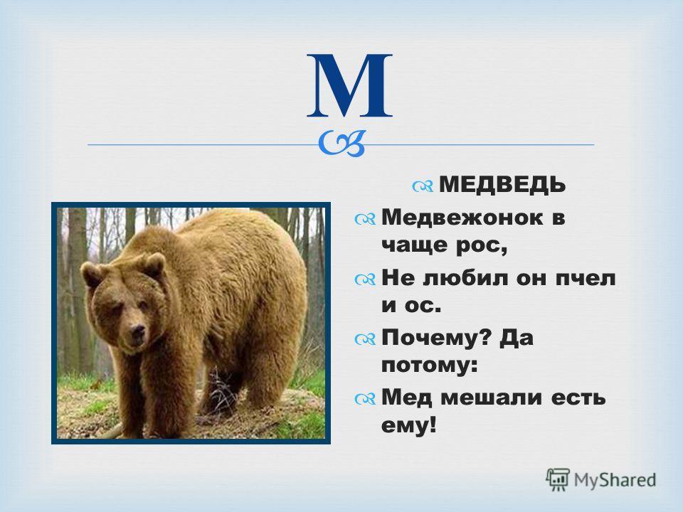 М МЕДВЕДЬ Медвежонок в чаще рос, Не любил он пчел и ос. Почему? Да потому: Мед мешали есть ему!