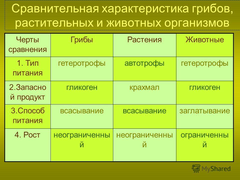Особенности питания грибов растений и бактерий