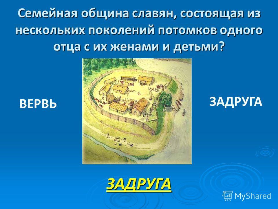 Семейная община славян, состоящая из нескольких поколений потомков одного отца с их женами и детьми? ЗАДРУГА ВЕРВЬ ЗАДРУГА