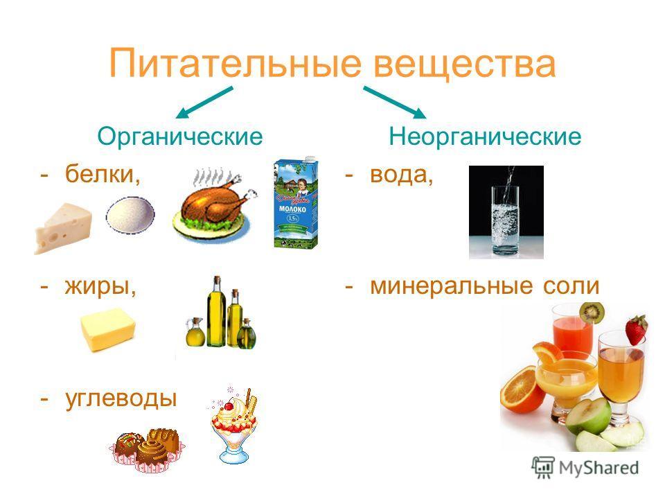 Питательные вещества Органические -белки, -жиры, -углеводы Неорганические -вода, -минеральные соли