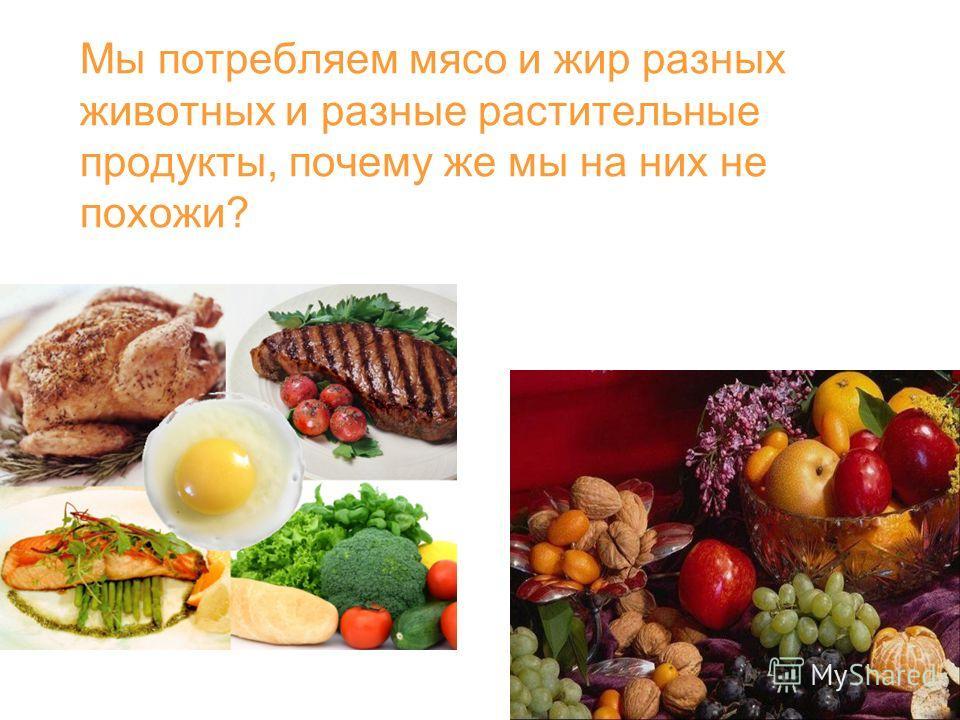 Мы потребляем мясо и жир разных животных и разные растительные продукты, почему же мы на них не похожи?