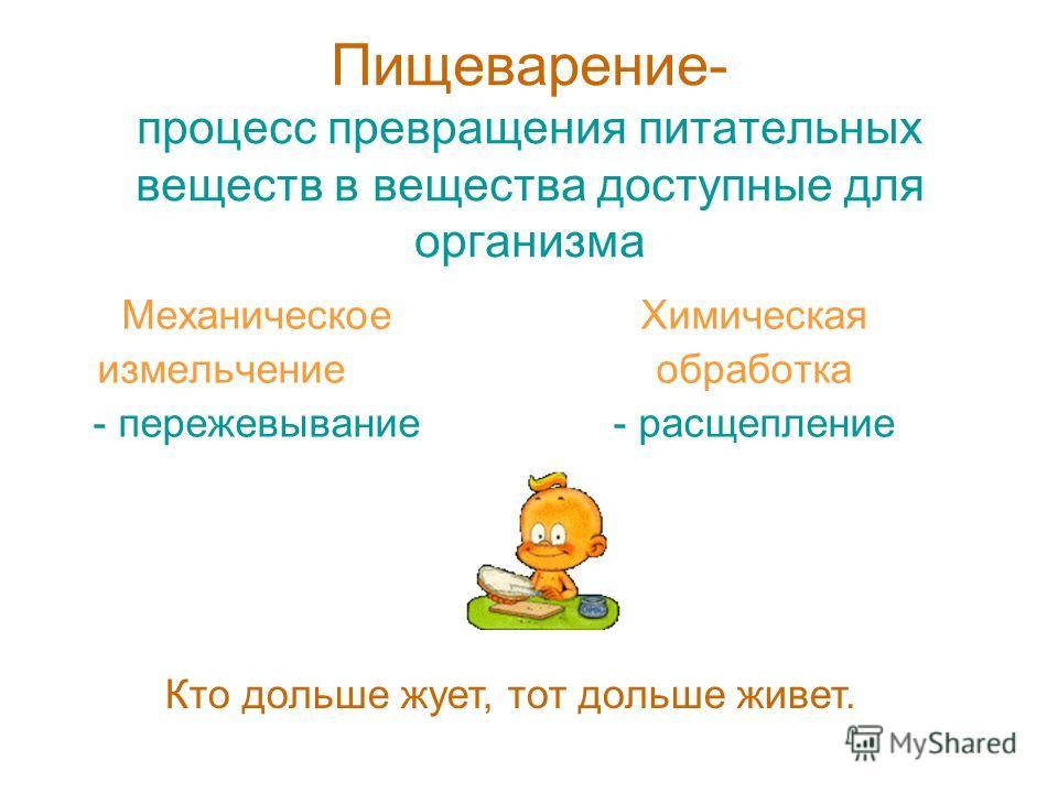 Пищеварение- процесс превращения питательных веществ в вещества доступные для организма Механическое измельчение - пережевывание Химическая обработка - расщепление Кто дольше жует, тот дольше живет.