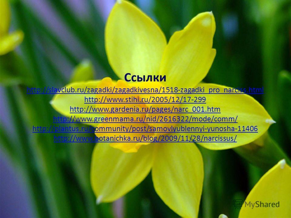 Ссылки http://slavclub.ru/zagadki/zagadkivesna/1518-zagadki_pro_narciss.html http://www.stihi.ru/2005/12/17-299 http://www.gardenia.ru/pages/narc_001.htm http://www.greenmama.ru/nid/2616322/mode/comm/ http://plantus.ru/community/post/samovlyublennyi-