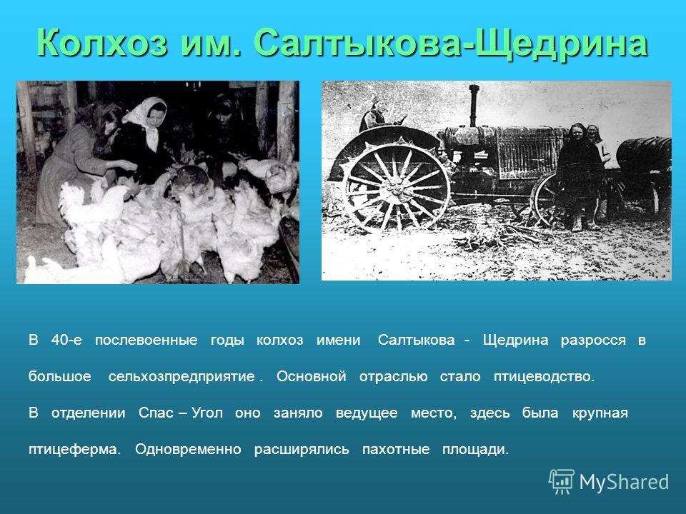 Колхоз им. Салтыкова-Щедрина В 40-е послевоенные годы колхоз имени Салтыкова - Щедрина разросся в большое сельхозпредприятие. Основной отраслью стало птицеводство. В отделении Спас – Угол оно заняло ведущее место, здесь была крупная птицеферма. Однов