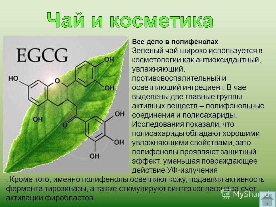 Все дело в полифенолах Зеленый чай широко используется в косметологии как антиоксидантный, увлажняющий, противовоспалительный и осветляющий ингредиент. В чае выделены две главные группы активных веществ – полифенольные соединения и полисахариды. Иссл