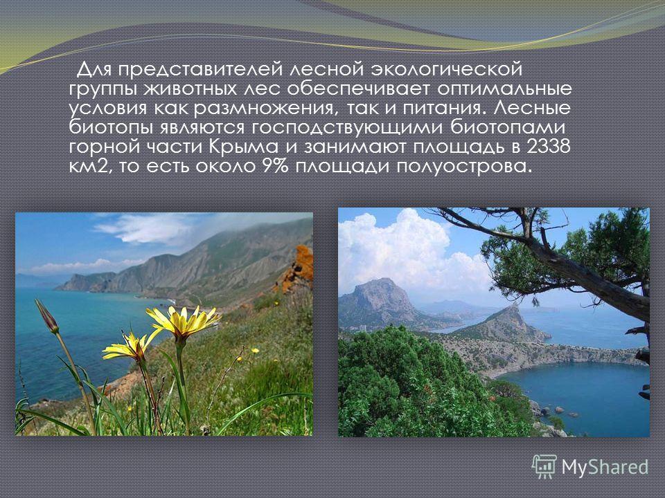 Для представителей лесной экологической группы животных лес обеспечивает оптимальные условия как размножения, так и питания. Лесные биотопы являются господствующими биотопами горной части Крыма и занимают площадь в 2338 км2, то есть около 9% площади