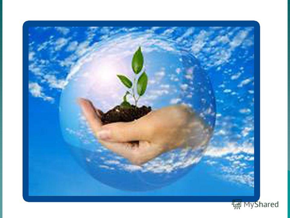 Так давайте сбережем Наш земной природный Дом!