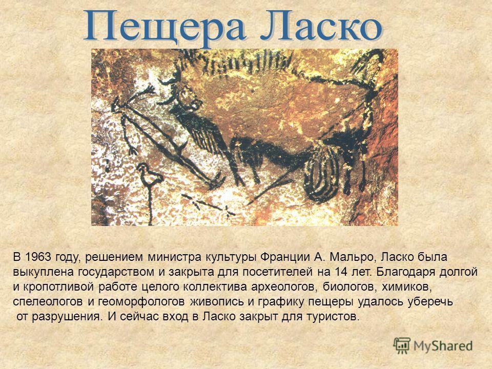 В 1963 году, решением министра культуры Франции А. Мальро, Ласко была выкуплена государством и закрыта для посетителей на 14 лет. Благодаря долгой и кропотливой работе целого коллектива археологов, биологов, химиков, спелеологов и геоморфологов живоп