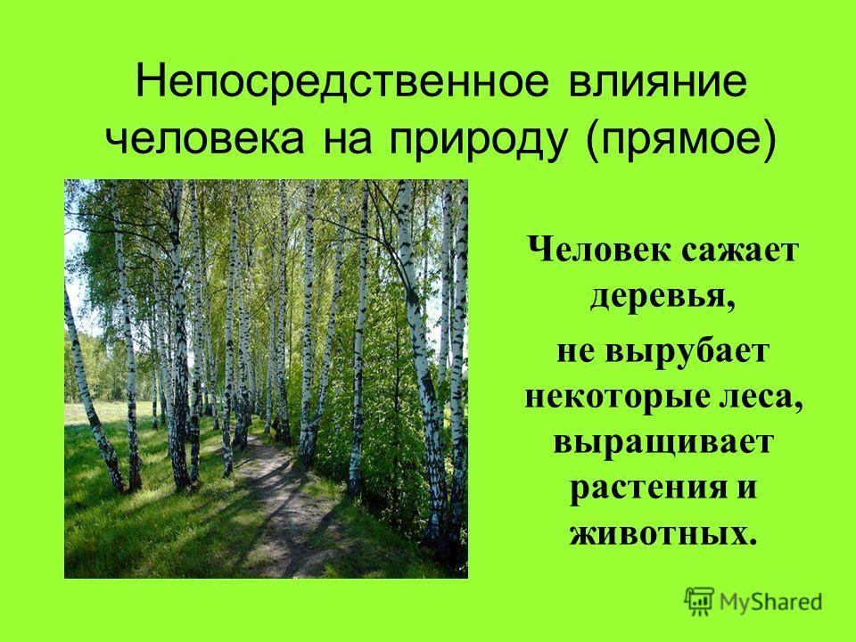 Непосредственное влияние человека на природу (прямое) Человек сажает деревья, не вырубает некоторые леса, выращивает растения и животных.
