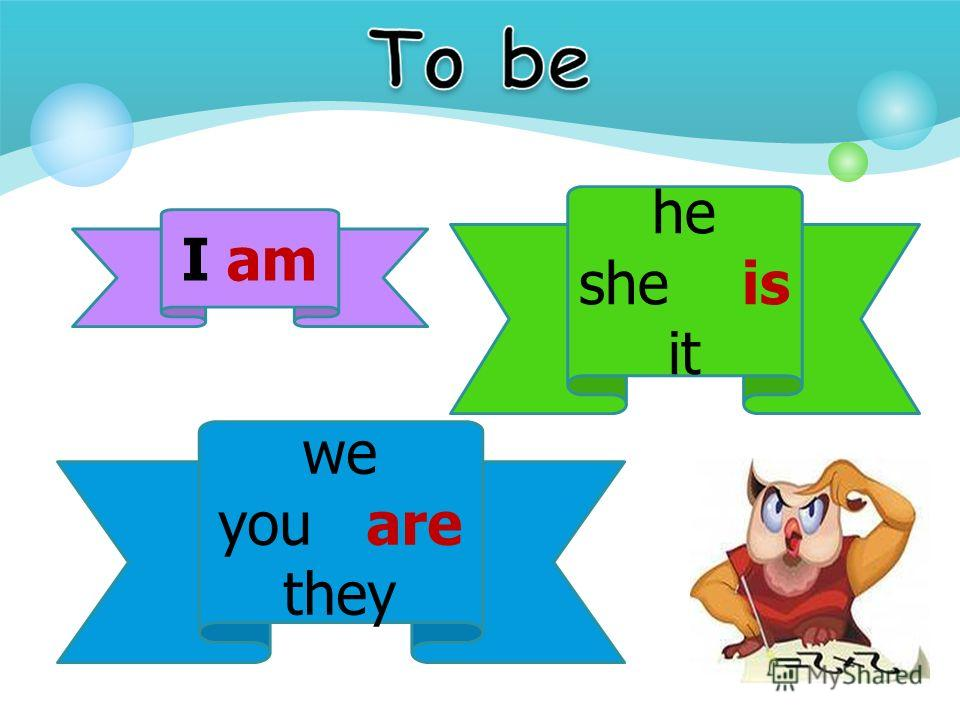 I am he she is it we you are they