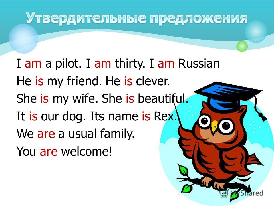 I am a pilot. I am thirty. I am Russian He is my friend. He is clever. She is my wife. She is beautiful. It is our dog. Its name is Rex. We are a usual family. You are welcome!