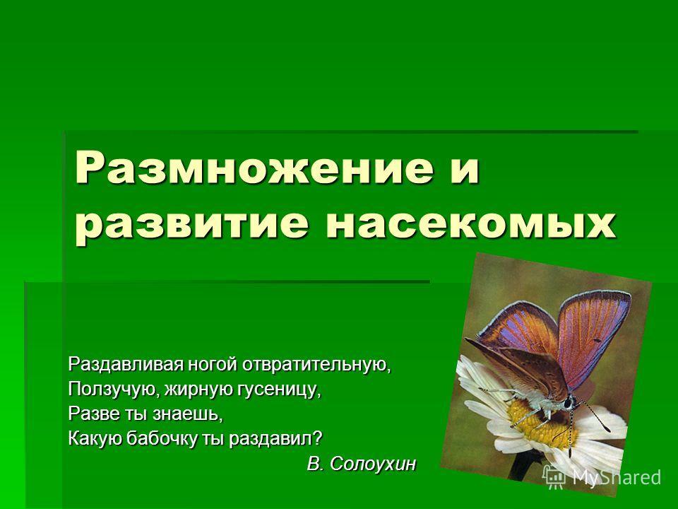 Размножение и развитие насекомых Раздавливая ногой отвратительную, Ползучую, жирную гусеницу, Разве ты знаешь, Какую бабочку ты раздавил? В. Солоухин В. Солоухин