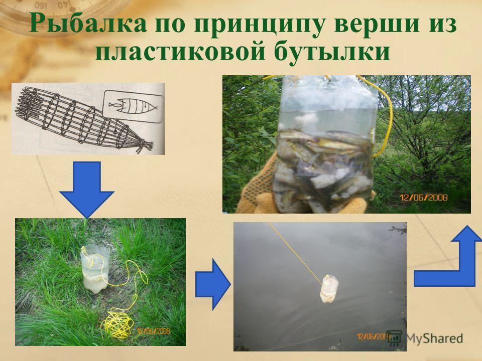 Рыбалка по принципу верши из пластиковой бутылки