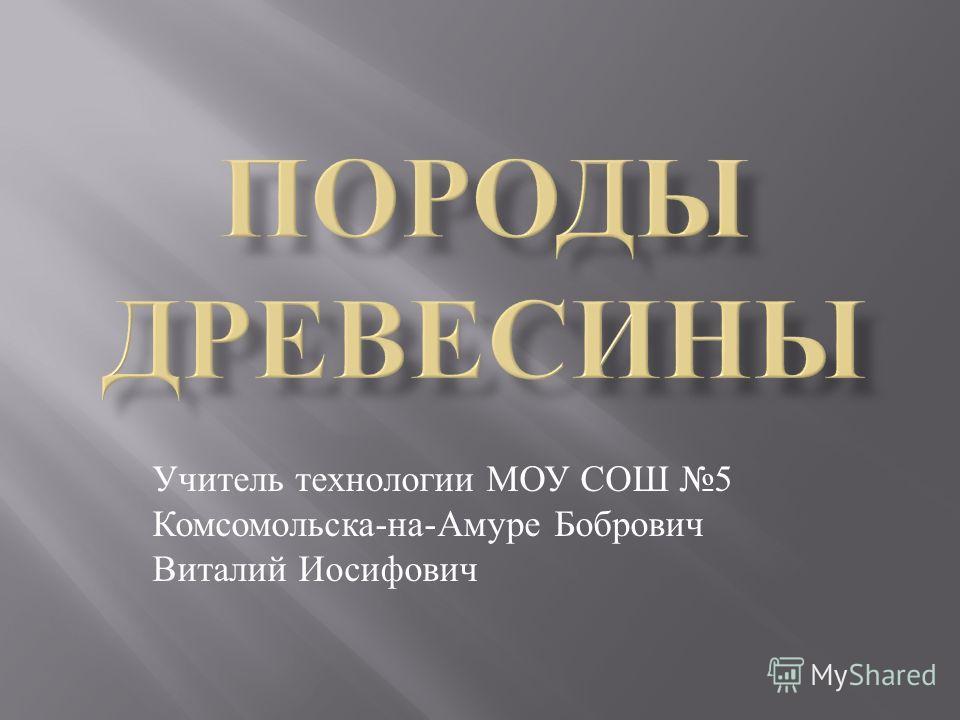 Учитель технологии МОУ СОШ 5 Комсомольска - на - Амуре Бобрович Виталий Иосифович