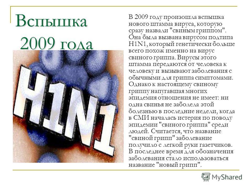 Вспышка 2009 года В 2009 году произошла вспышка нового штамма вируса, которую сразу назвали