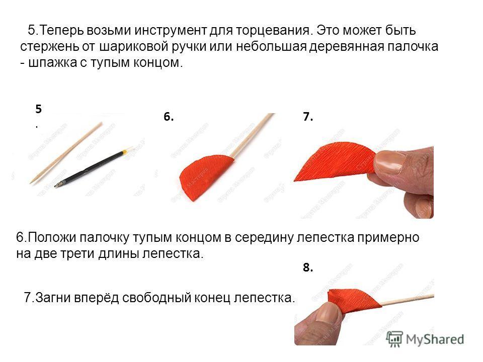 5.Теперь возьми инструмент для торцевания. Это может быть стержень от шариковой ручки или небольшая деревянная палочка - шпажка с тупым концом. 6.Положи палочку тупым концом в середину лепестка примерно на две трети длины лепестка. 7.Загни вперёд сво