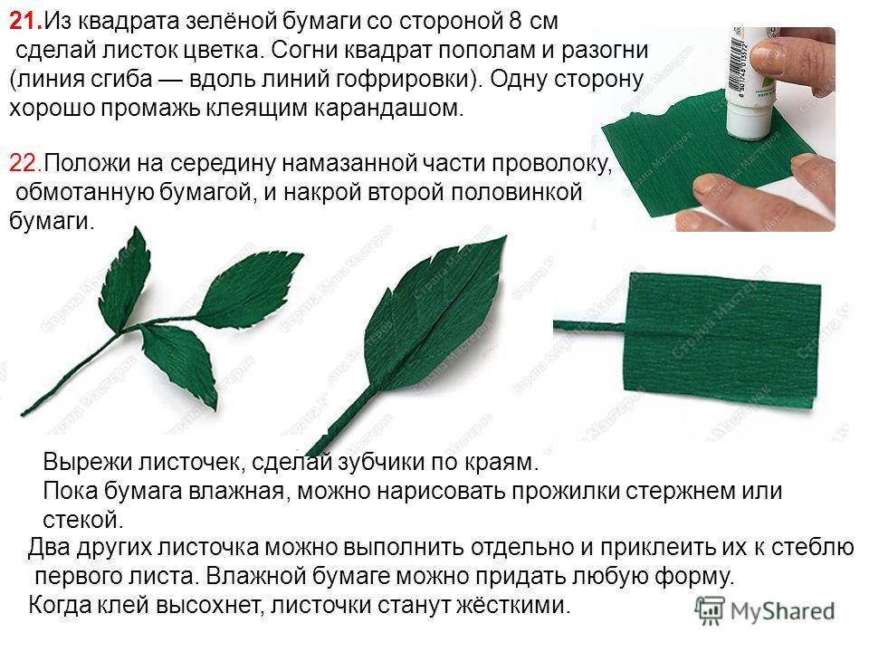21.Из квадрата зелёной бумаги со стороной 8 см сделай листок цветка. Согни квадрат пополам и разогни (линия сгиба вдоль линий гофрировки). Одну сторону хорошо промажь клеящим карандашом. 22.Положи на середину намазанной части проволоку, обмотанную бу